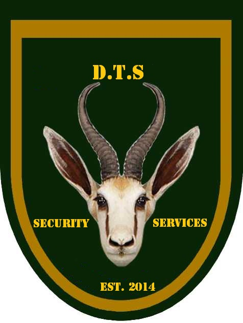 D.T.S security services